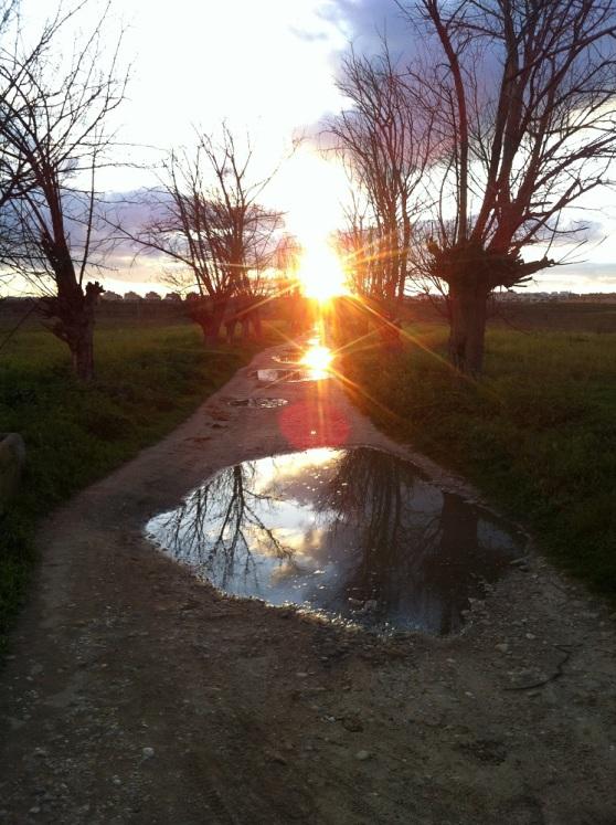 Sigue tu camino | EMOVIUM